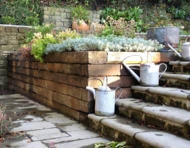 Steps Watering Cans