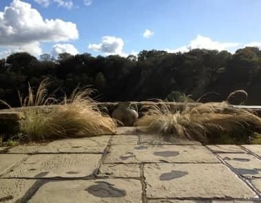 Rural Stone