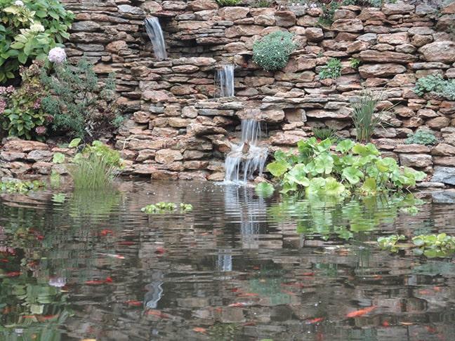 Castlebridge-October-2011-025