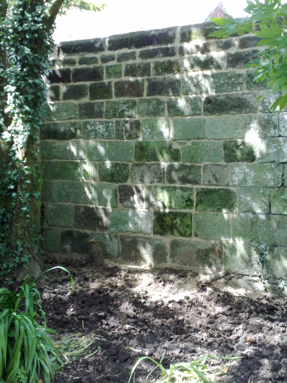 wiltshire-garden-wall